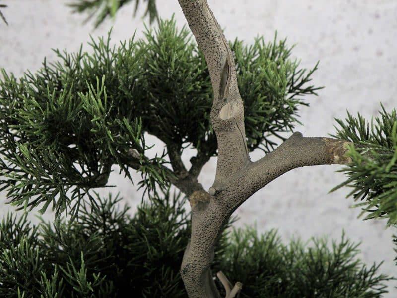 tuja na pniu w doniczce, bonsai, sztuczne drzewka