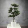 iglak sztuczna tuja bonsai