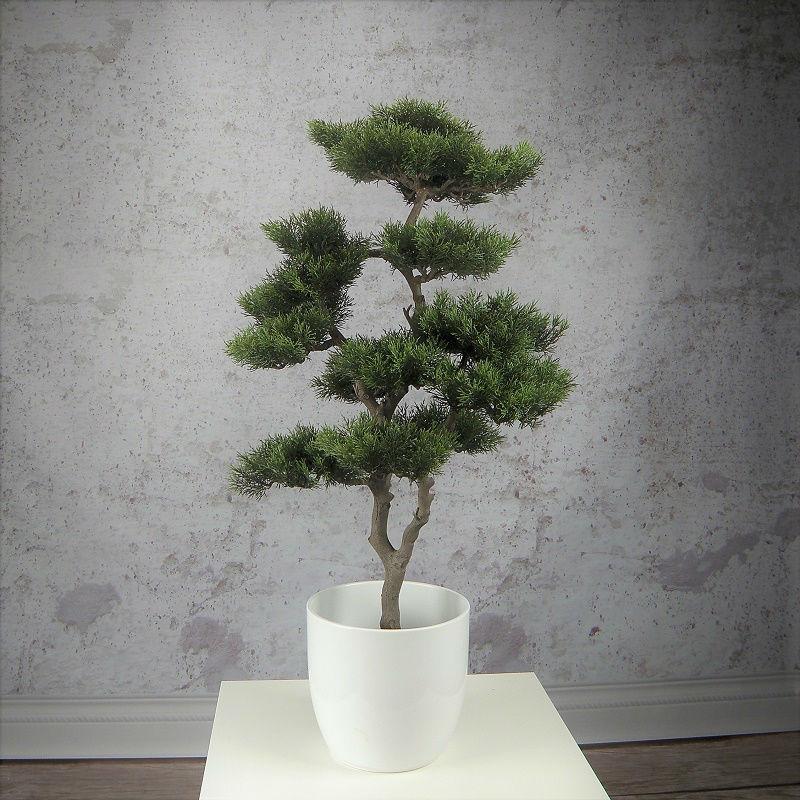 iglak sztuczna tuja formowana bonsai