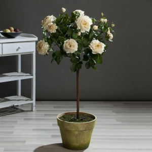 Sztuczna Róża na Pniu 135 cm