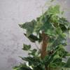 sztuczny bluszcz z podpórka sztuczne rosliny wysoka jakosc