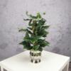 sztuczny bluszcz rośliny wysoka jakość