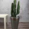 sztuczny kaktus sztuczne rośliny wysoka jakość