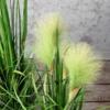 Sztuczna Trawa wysoka jakość trawa pampasowa