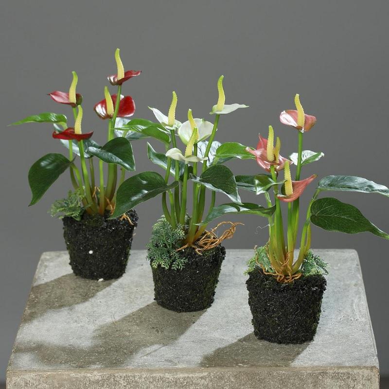 mini sztuczne anturium w ziemi czerwone białe różowe sztuczne rośliny