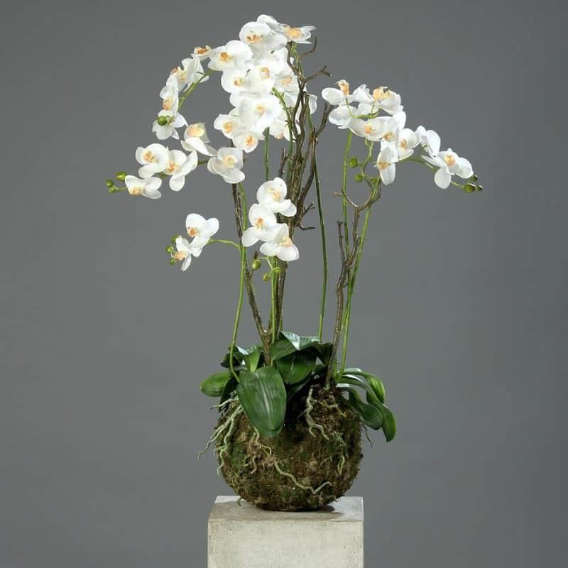 storczyk-sztuczny duży biały kremowy