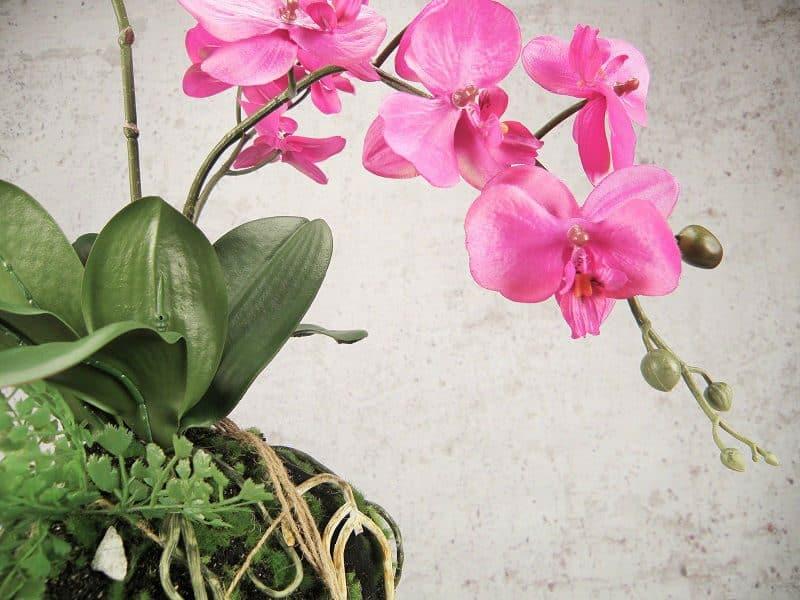sztuczny storczyk wiszący wanda różowy 60 cm