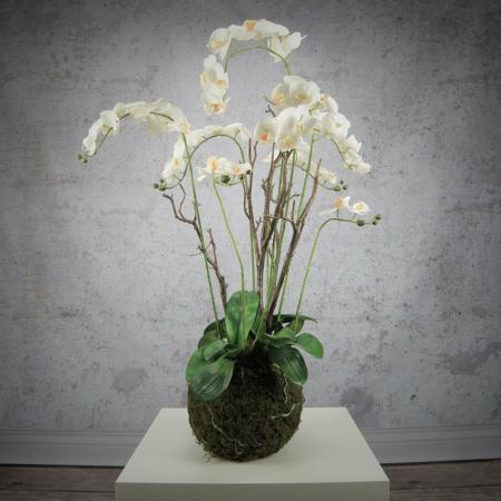 sztuczny storczyk phalaenopsis biały w mchu kompozycja