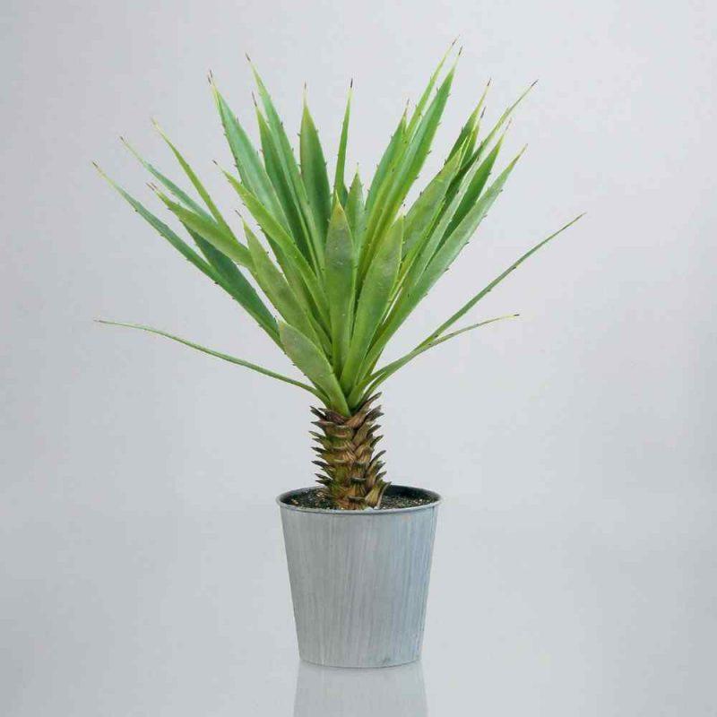 sztuczna agawa 50 cm