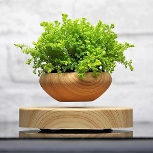 Lewitująca doniczka - Air Bonsai