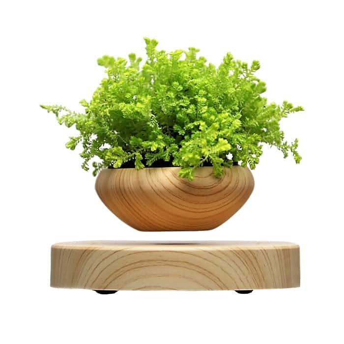 air bonsai lewitująca doniczka