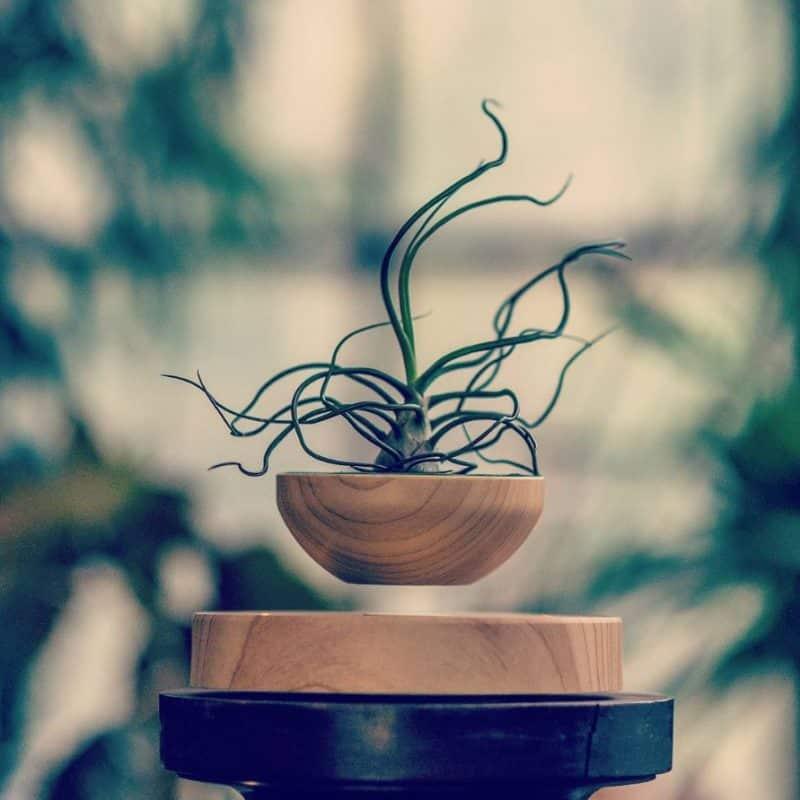 levitation-pots-5