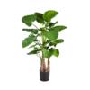 sztuczne drzewa alokozja wysoka jakość