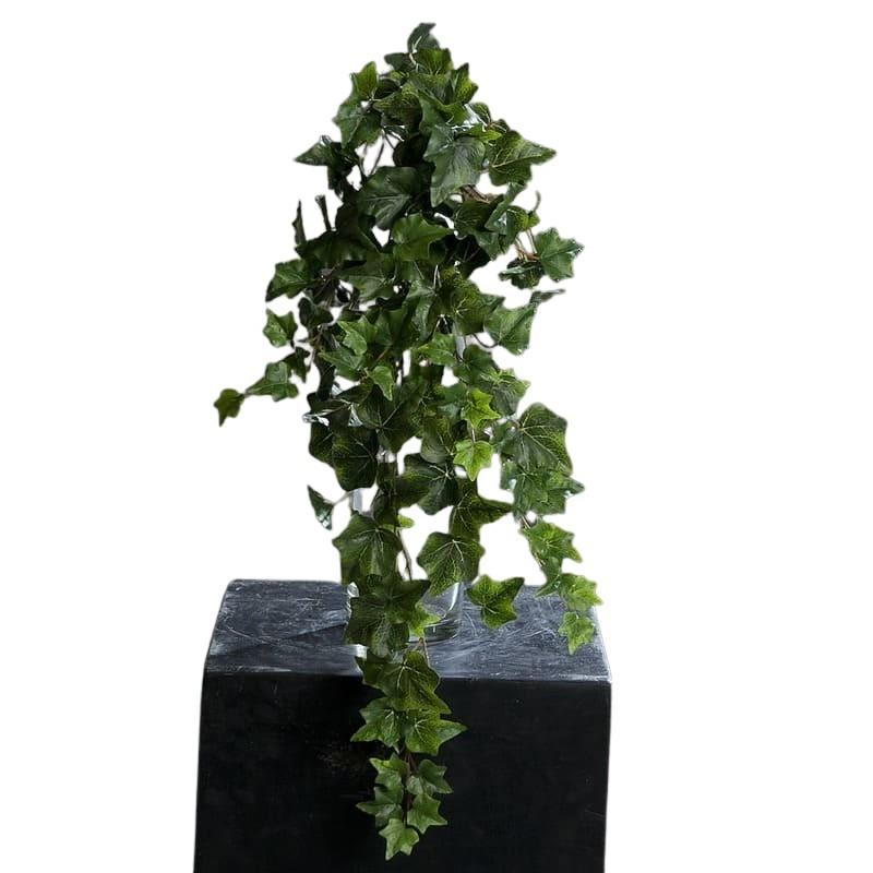 dlugi zielony bluszcz 70 cm