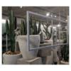 Kaktus Karnegia 01