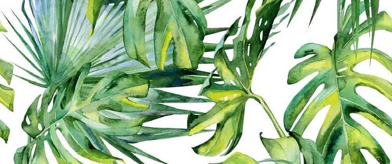 liście sztuczne rośliny