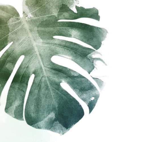 sztuczne rosliny
