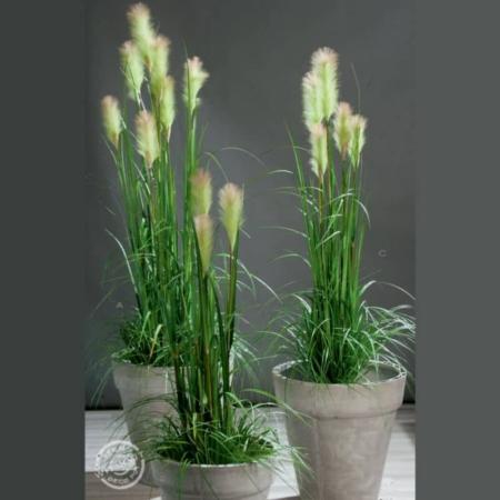 sztuczna trawa pampasowa z kotkami