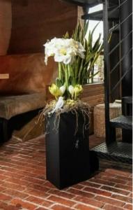 aranżacja kwiaty rośliny donica