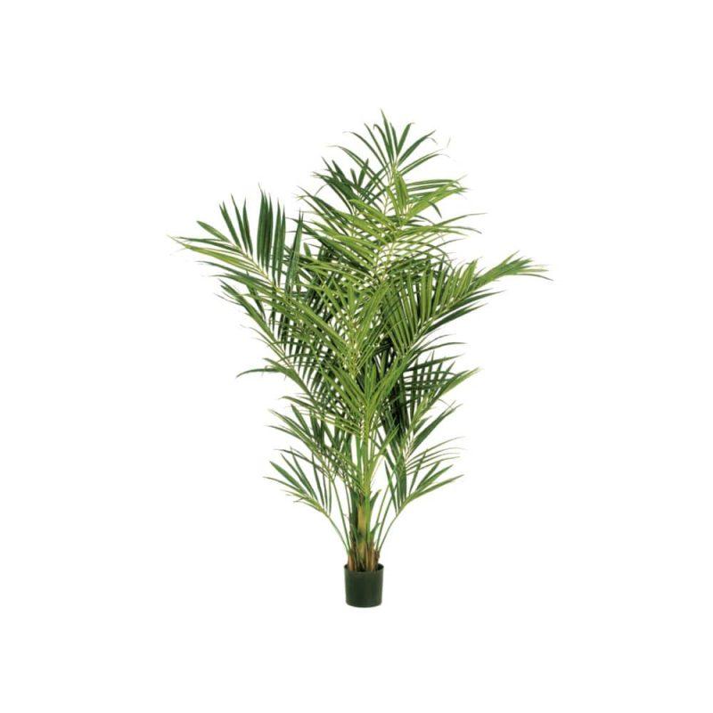 sztuczna palma kentia deluxe 225cm
