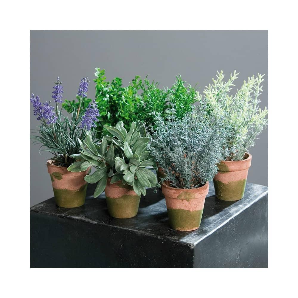 sztuczne zioła mix sztuczna lawenda rozmaryn pietruszka tymianek