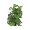 sztuczne rośliny folodendron monstera
