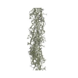 Girlanda - Mech Hiszpański - Tillandsia - Oplątwa- 90 cm