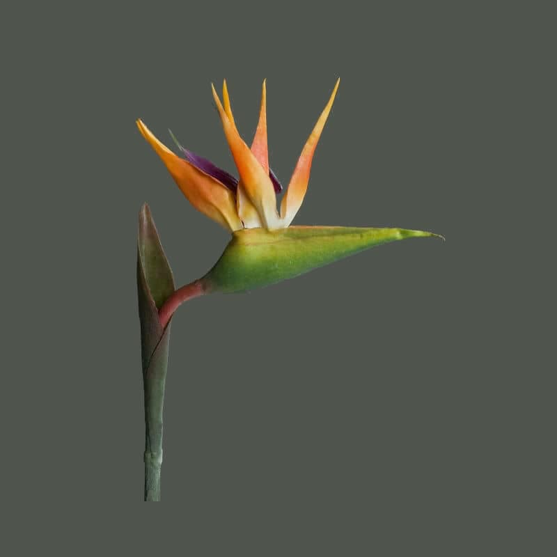 sztuczne kwiaty strelicja rajski ptak silikon