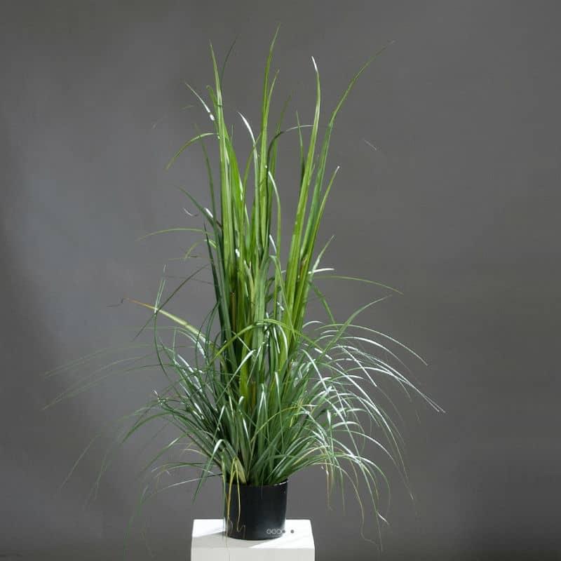 Tatarak sztuczna trawa sztuczne rośliny