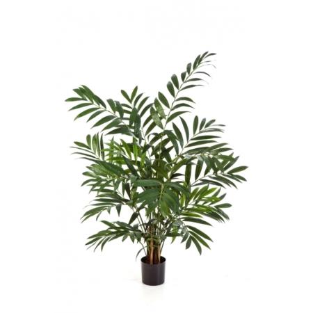 Palma Areca 110 cm