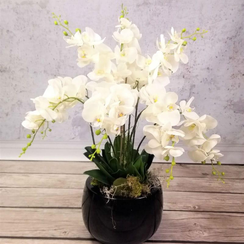 biała orchidea storczyk sztuczny