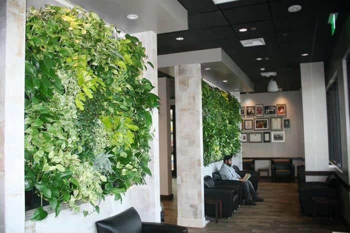 sztuczne zielone ściany we wnętrzu