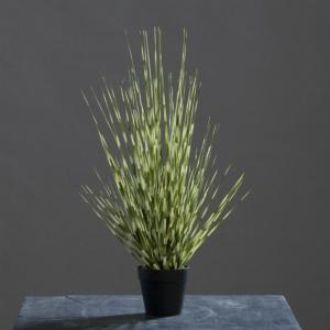 miskant sztuczna trawa biało-zielony