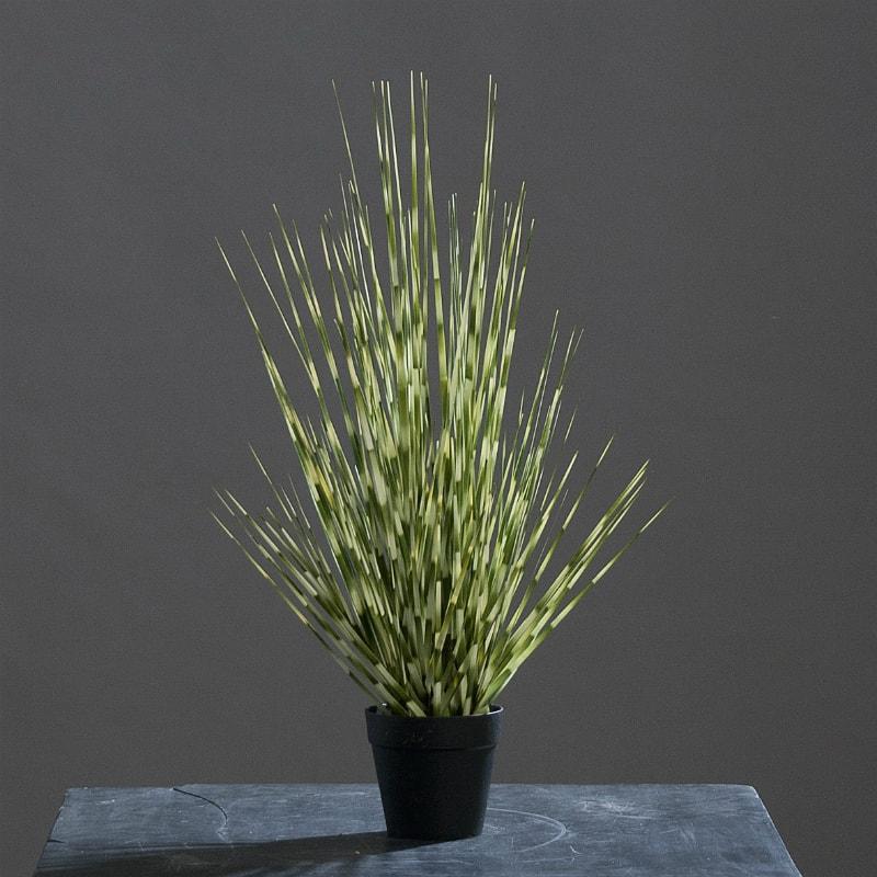 sztuczna trawa miskant białozielony