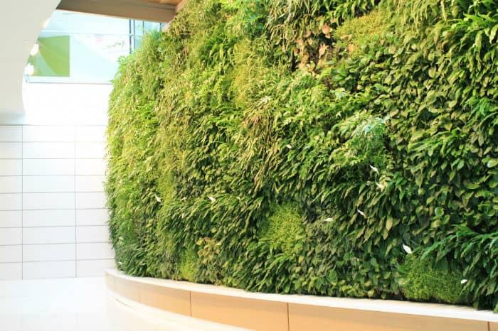 sztuczne rośliny ściana