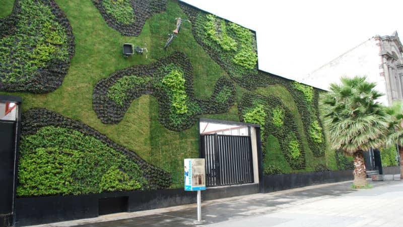 budynek z zielonych ścian