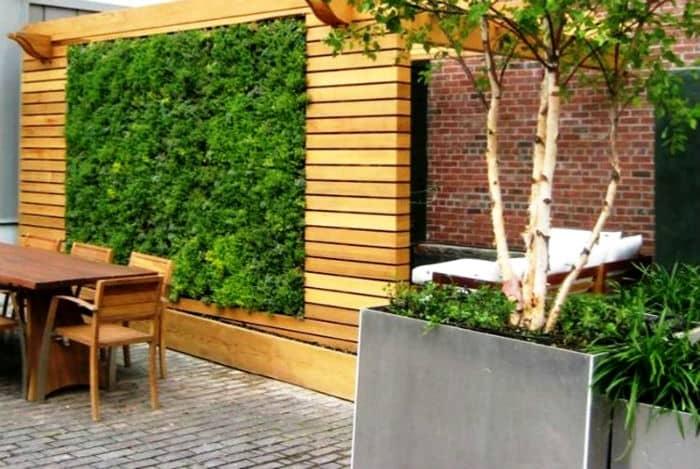 zielone ściany na zewnątrz