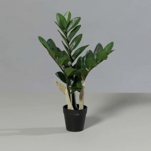 Sztuczny Zamiokulkas - Zamio 43 cm