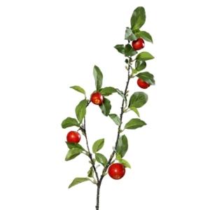Gałązka- jabłoń z owocami