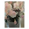 Blady-Róż Cyklamen Gałązka 40 cm - Produkt Premium 02