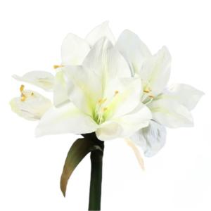 Kremowy Amarylis 3 Kwiaty 1 Gałązka 56 cm