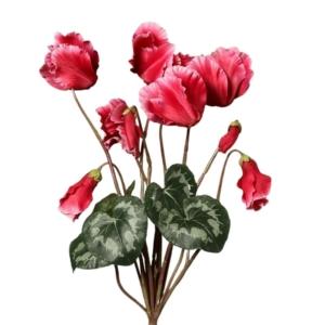 Ciemny-Róż Cyklamen Gałązka Wiele Kwiatów 40 cm