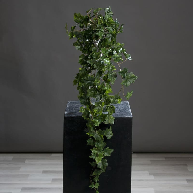 Duży Zielony Bluszcz 80 cm