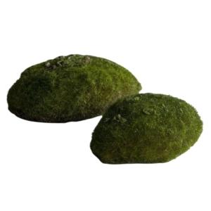 Kamienie Mchu 13 cm