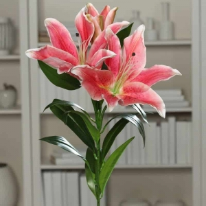 Lilia Fuksja 2 Kwiaty 1 Gałązka Duża 93 cm