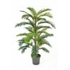 palma areca areka 120 cm