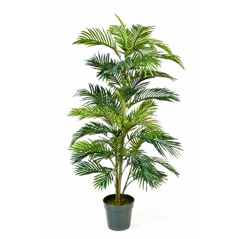 palma areca 150cm
