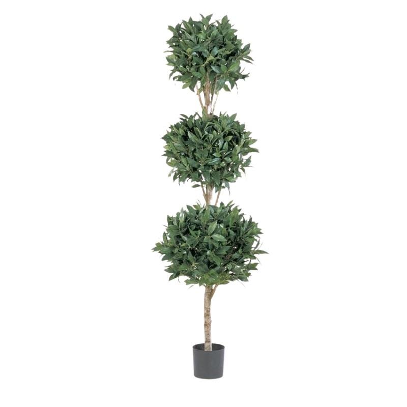 drzewko laurowe potrojne kule