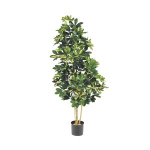Sztuczne Drzewko Szeflera