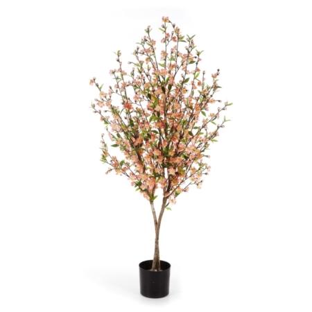 Drzewko Kwiat Wiśni